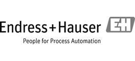 Endress_hauser_logo-31a57443